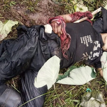 Army offensives in Bukidnon kill NPA terrorist leader